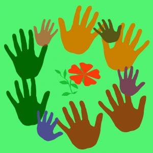 Diverse hands surround a flower